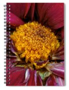 Flower - At The Center Of It All Spiral Notebook