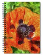 Flower - Poppy - Orange Poppies  Spiral Notebook