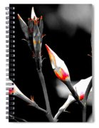 Flower 12 Spiral Notebook