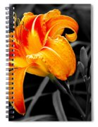 Flower 24 Spiral Notebook