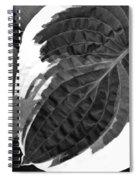 Flower 27 Spiral Notebook