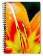 Flower 28 Spiral Notebook