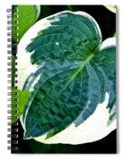Flower 29 Spiral Notebook