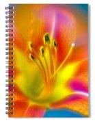 Flower 30 Spiral Notebook