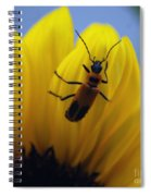 Flower And Bug Spiral Notebook
