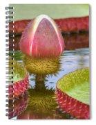 Victoria Amazonica Bud Spiral Notebook