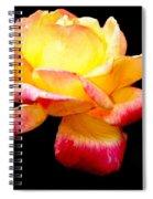 Flower Glow Spiral Notebook