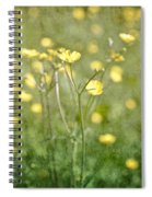 Flower Of A Buttercup In A Sea Of Yellow Flowers Spiral Notebook
