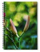 Flower Of Summer Spiral Notebook