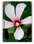 Flower Painting 0007 Spiral Notebook