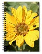 Flower Painting 0010 Spiral Notebook