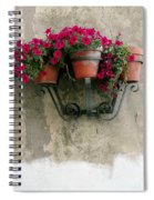 Flower Pots On Old Wall Spiral Notebook