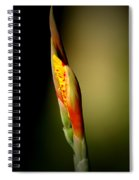Flowerbud Spiral Notebook