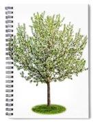 Flowering Apple Tree Spiral Notebook