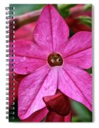 Flowering Tobacco Spiral Notebook
