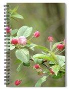 Flowering Tree Spiral Notebook