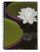 Victoria Amazonica White Flower Spiral Notebook