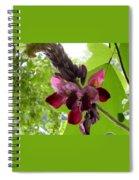 Flowering Vine  Spiral Notebook