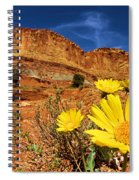 Flowers And Buttes Spiral Notebook