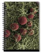 Flowers, Digital Streak Image Spiral Notebook