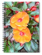 Flowers Plastic Or Real  Spiral Notebook