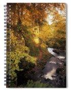 Flowing Water Through A Forest Spiral Notebook