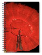 Fluorescent Coral In White Light Spiral Notebook