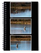 Fly Fishing Triptych Black Background Spiral Notebook