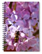 Fly In The Lilacs Spiral Notebook