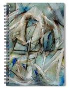 Fly Light Spiral Notebook