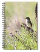 Flycatcher On A Twig Spiral Notebook