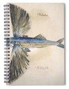 Flying-fish, 1585 Spiral Notebook