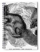 Flying Squirrel Spiral Notebook