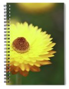 Focal Point Spiral Notebook