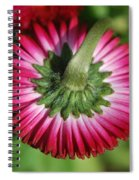 Folded Flower Spiral Notebook