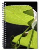 Following The Light Spiral Notebook