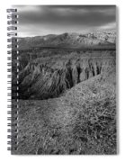 Font's Point Bush   Black And White Spiral Notebook