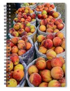 Food - Harvested Peaches Spiral Notebook