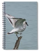 Foot Up Wing Test Spiral Notebook