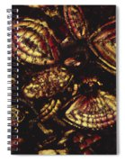 Foraminiferous Limestone Lm Spiral Notebook