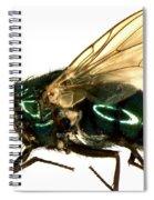 Forensic Helper, Common Green Bottle Spiral Notebook