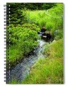 Forest Creek In Newfoundland Spiral Notebook