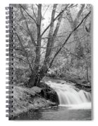 Forest Creek Waterfall In Black And White Spiral Notebook