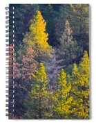 Forest Foliage  Spiral Notebook