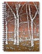 Forest Ghosts Spiral Notebook