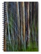 Forest Impression No.119 Spiral Notebook
