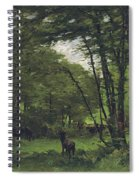 Forest Of Fontainebleau Spiral Notebook