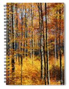 Forest Of Gold Spiral Notebook
