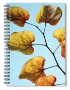 Forest Pansy Autumn Spiral Notebook