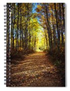 Forest Path In Autumn Spiral Notebook